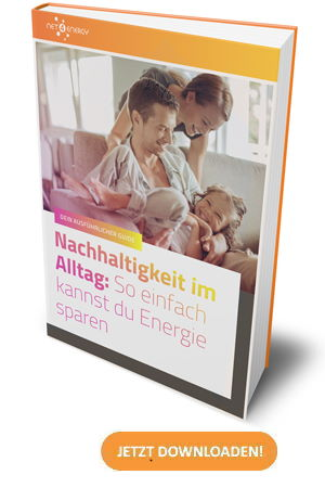 strom-sparen-energie-sparen-guide-ebook-net4energy